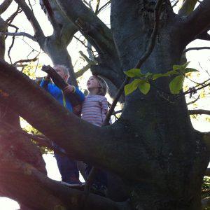 Wildnis für Kinder