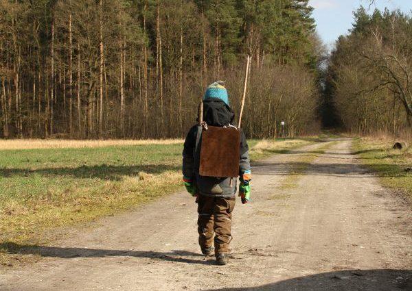 Erlebnis Wald - Waldtage mit Kindern gestalten